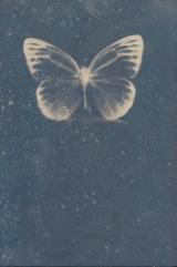 Genice Valentino Wickum, cyanotype, 2012
